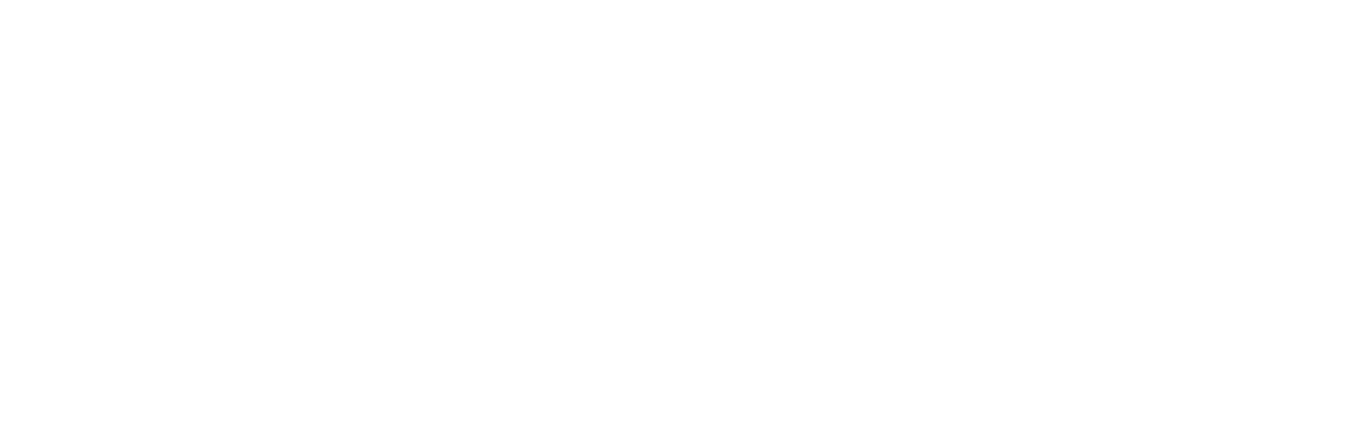 Filmproduktion Bern BOFF - Logo Wirz Brand Solutions